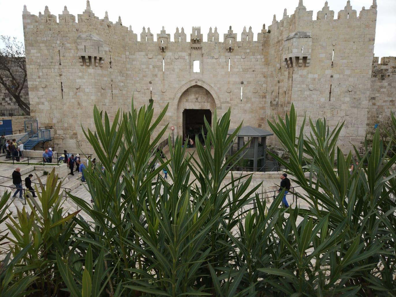 Cost Of Umrah Visa Fees 2019 2020: Jordan & Masjid Al Aqsa Tour 2020